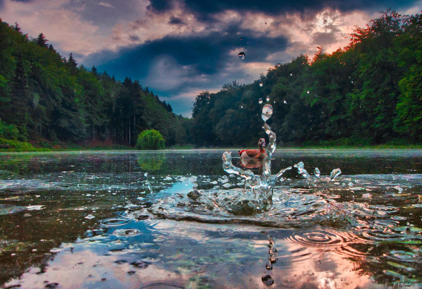 Anton Trexler - Eben GANZ(S) im Wasser