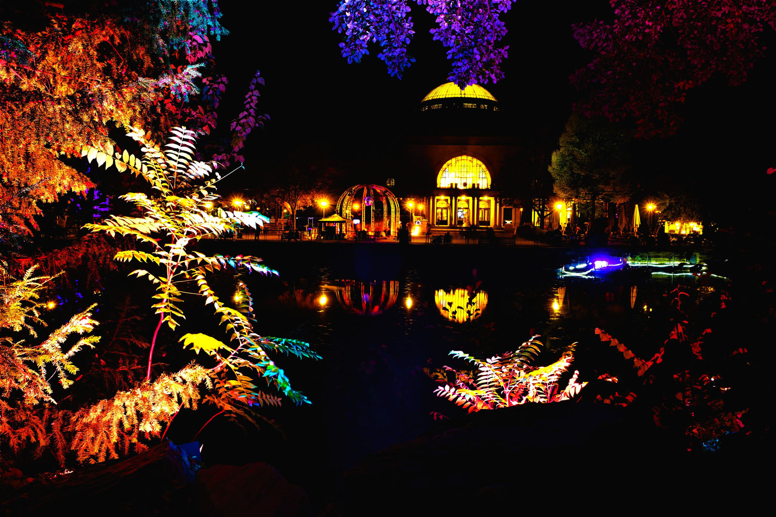 Fotokunst 2.0 - Lichtspiele im Kurpark ❤️